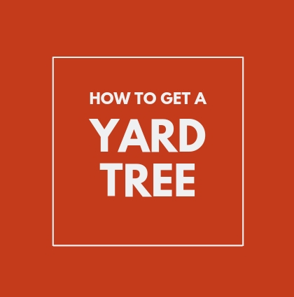 How to Get a Yard Tree