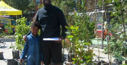 Community Yard Tree Giveaway at Fleisher Art Memorial, Fall 2014