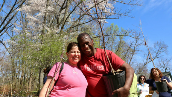 Pennypack Yard Tree Giveaway Spring 2015