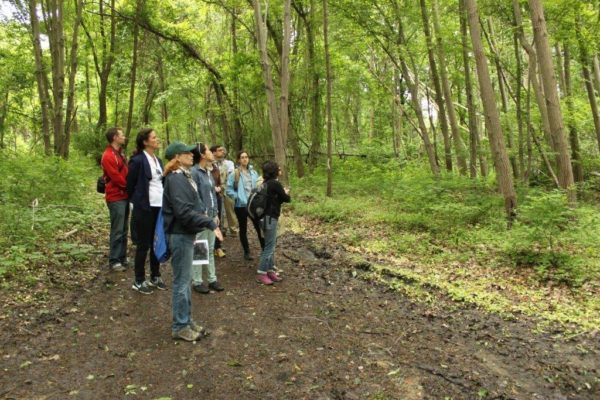 Plant Walk & Climate Change Monitoring Workshop @ Haddington Woods