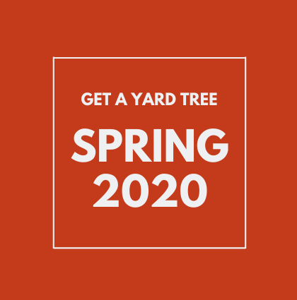 Spring 2020 Yard Tree Giveaways