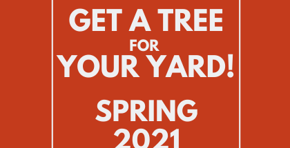 Get a tree for your yard! Click this link.